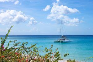 Another catamaran in Reeds Bay
