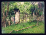 the gate in the hills